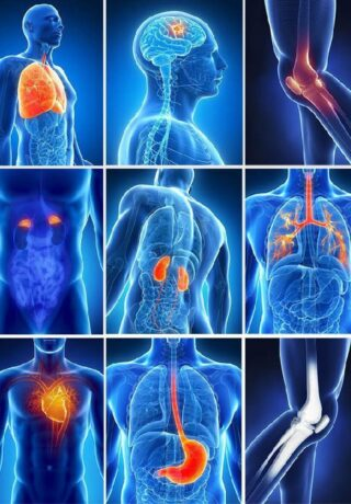 Praticien biorésonance médecine douce non conventionnelle soins énergétiques corps bilan global vitalité