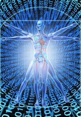 Énergéticien thérapeute biorésonance séance guérir par l'effet analyse des fréquences du corps santé bien être vitalité